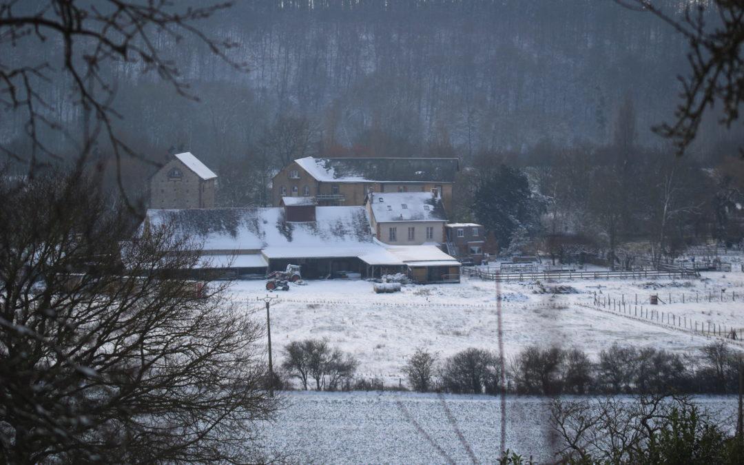 Février 2021 – Sous la neige
